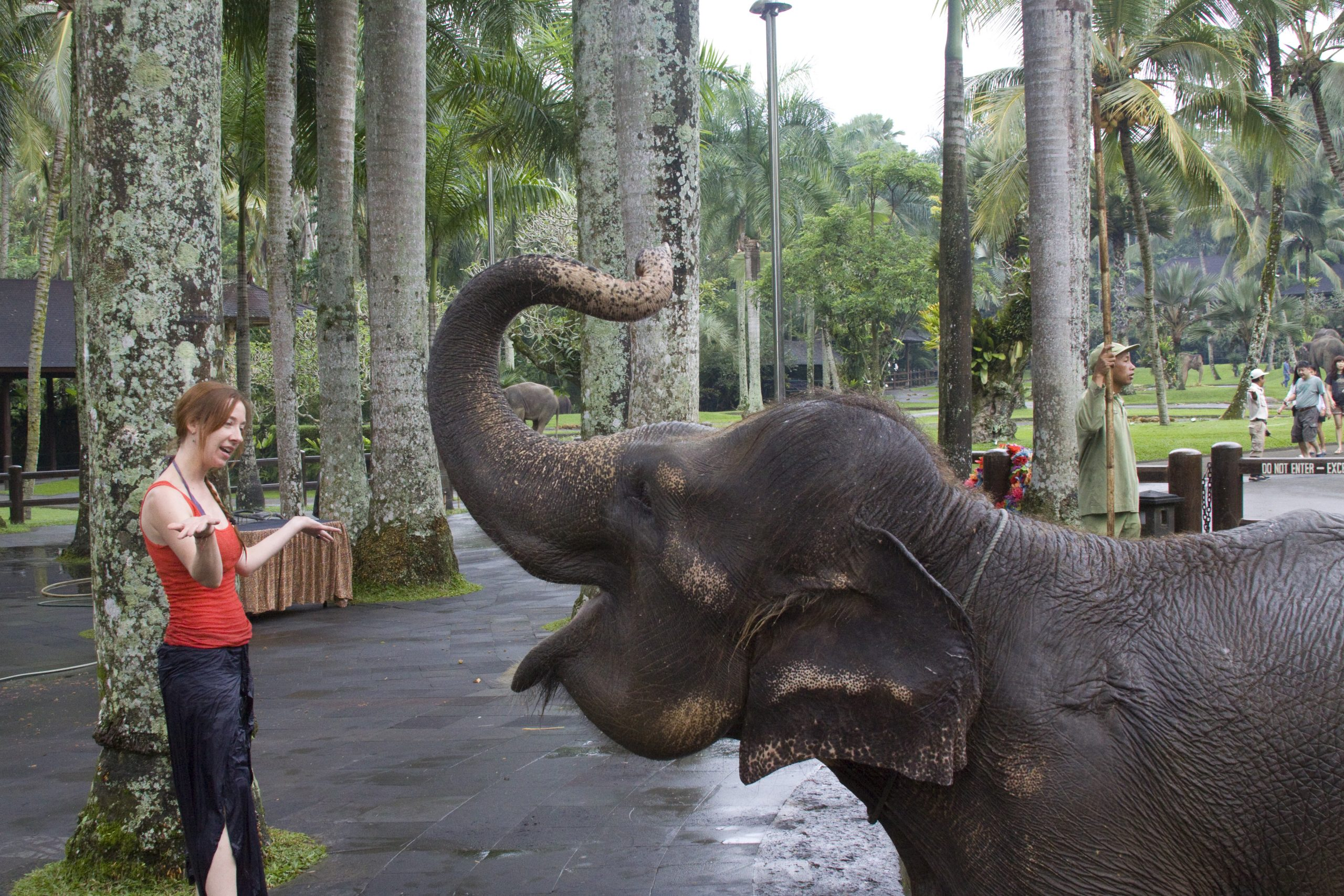 Jill with elephant-trunk up and smiling